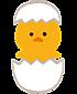 Hiyoko_baby_2